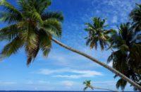 Malediven-Aktivitaeten